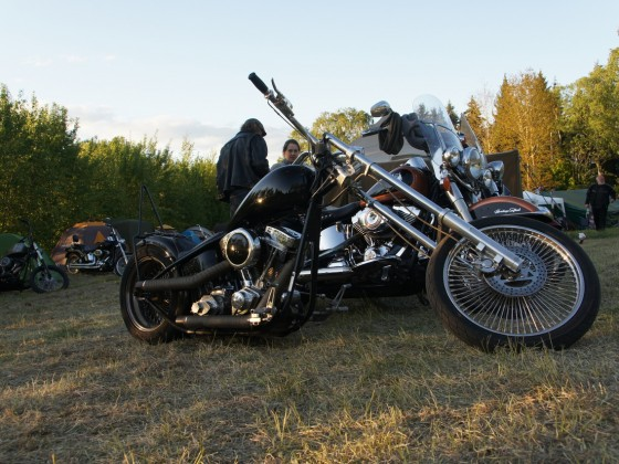 Norrtälje Custom Show 2019 - Twin Club MC
