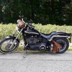 Harley Sally