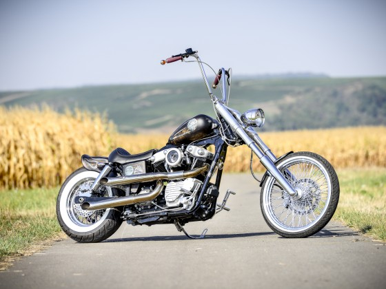 CCE Bolt on and ride Dyna